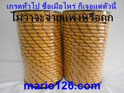 SAM_4605
